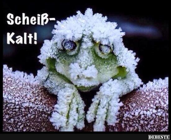 Scheiß-Kalt! | Lustige Bilder, Sprüche, Witze, echt lustig