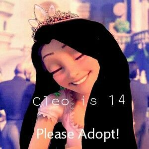 cleo is 14 please adopt