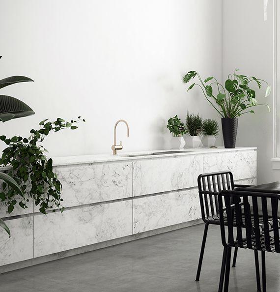 Minimalistic Kitchen With Green Plants