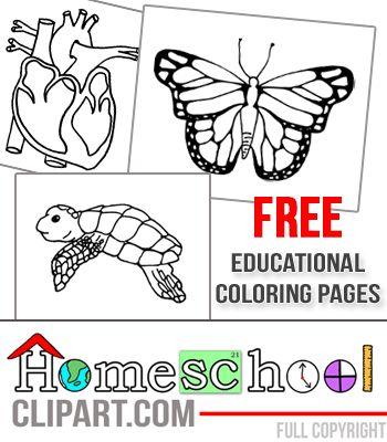 62 best Free Coloring Pages images on Pinterest Coloring books - copy coloring pages games superhero