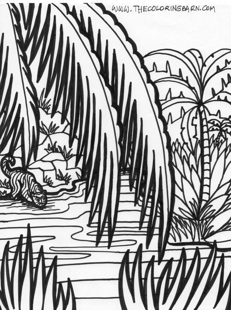 jungle coloring pages Jungle scene coloring pages