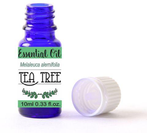 Online Shop | Tea Tree Essential Oil in South Africa | Oh deer! Studio