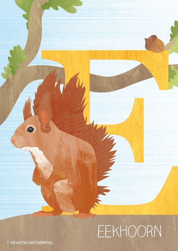 De E is van eekhoorn. Dit vrolijke knaagdiertje kan goed in bomen klimmen en kom je dan ook vaak tegen in het bos. Met zijn prachtige pluizige staart kan hij sturen als hij van tak naar tak springt.