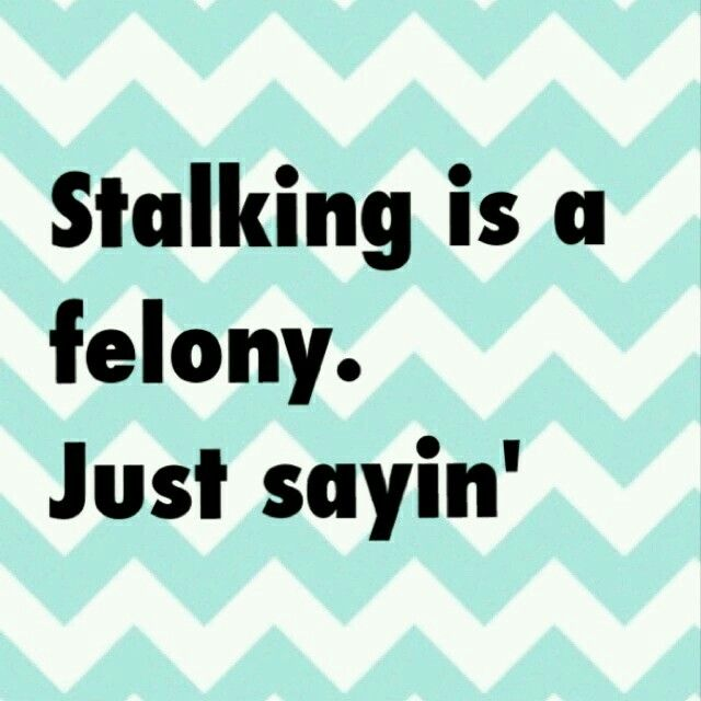 Stalking Quotes Unique Best 25 Stalking Quotes Ideas On Pinterest  Another Word For