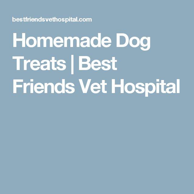 Homemade Dog Treats | Best Friends Vet Hospital