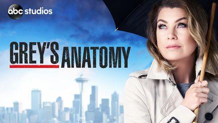 "Confira ""Grey's Anatomy"" na Netflix"