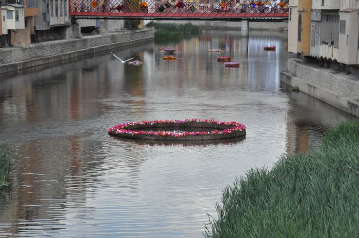 Río Oñar a su paso por Girona