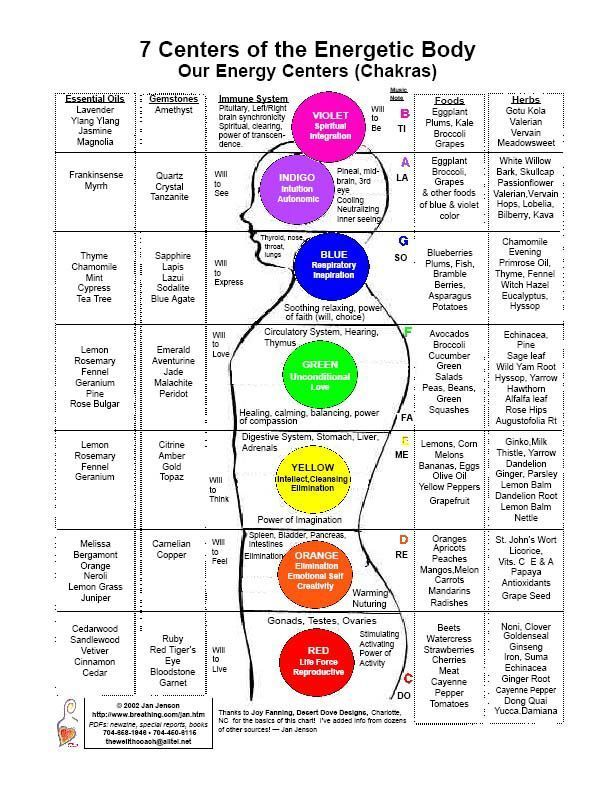 7 Centers of the Energetic Body. Our Energy Centres Chakra Chart - detailing essential oils, gemstones, immune system, musical notes, foods, herbs, colors, and physical body correspondences.