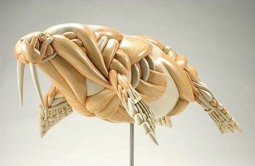 Masao Kinoshita's Sculptures Play With Exaggerated Anatomy