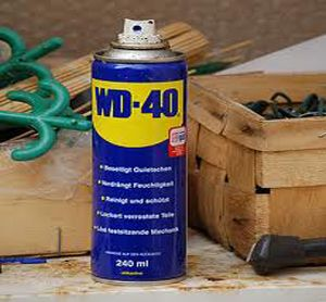 WD40 = prevent wasp nests, remove dog poop from shoes, remove burrs from pet, rusty screw removal, rust & tar removal.