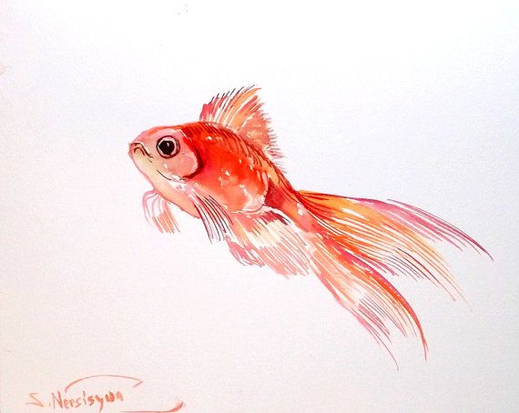 Poisson rouge, aquarelle originale, 8 X 10 po, goldfich art, art d'enfants, enfants-sticker, poissons d'aquarium