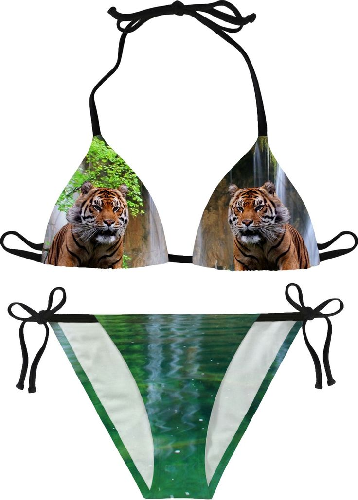 Tiger nad Waterfall #erikakaisersot #RageOn #bikini #tigers