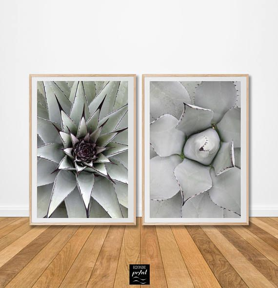 "Agave leaf succulent digital print leaves cactus tropical set of two prints 2 piece plant print wall art large printable botanical foliage poster desert  Your purchase includes 4 high resolution .jpeg files (300 dpi):  - 2 .jpeg file for 4:5 ratio printings (4x5"", 8x10"", 11x14"", 12x15"", 16x20""; 10x12cm, 20x25cm, 28x35cm, 30x38cm, 40x50cm);  - 2 .jpeg file for 2:3 ratio printings (4x6"", 6x9"", 8x12"", 10x15"", 12x18"", 16x24"", 20x30"", 24x36"", 28x42"", 32x48""; 10x15cm, 20x30cm, 30x45cm, 40x60cm…"