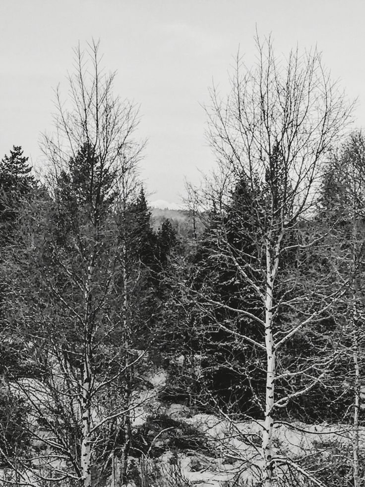 Gålå - Norway ♡ Black and White