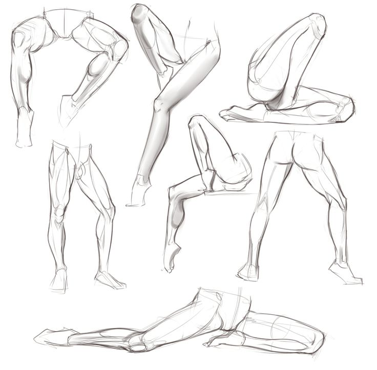 legs 1 ✤ || CHARACTER DESIGN REFERENCES | キャラクターデザイン • #quadriceps #calves #hamstrings || ✤