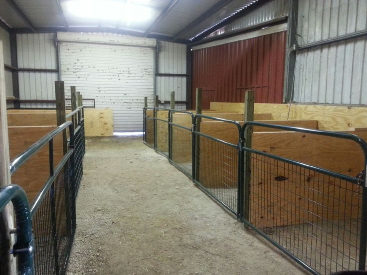 1000 images about barn milking room on pinterest goat for 8 stall barn plans