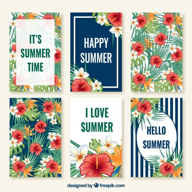 Cute collection cards of summer Free Vector