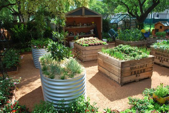 vegie garden (I need something elevated like this for smaller plants like salad greens/radishes and the like)