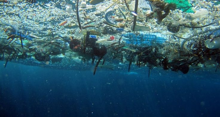 Unsightly plastic bottles, bags and other trash give just a hint of the largely unseen problem of plastic pollution. Scientists have found tiny bits of it throughout the ocean. The bad news: Sea life can't tell the difference between plastic and food.