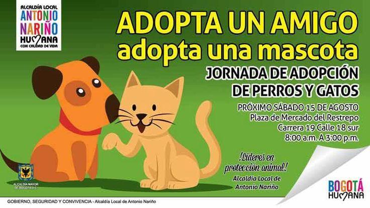 Jornada de adopción de animales #adoptanocompres #antonionarino #Bogota #Mascotinuum