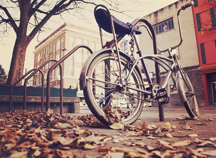 Bike park during Fall - IM Creator