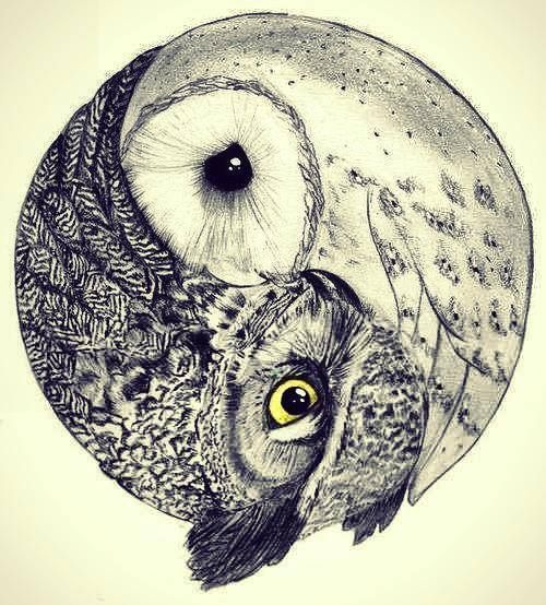 love drawing animals life birds hippie hipster follow back boho indie Grunge acid peace bohemian relax pastel owl Wings pale, realmente hermoso.