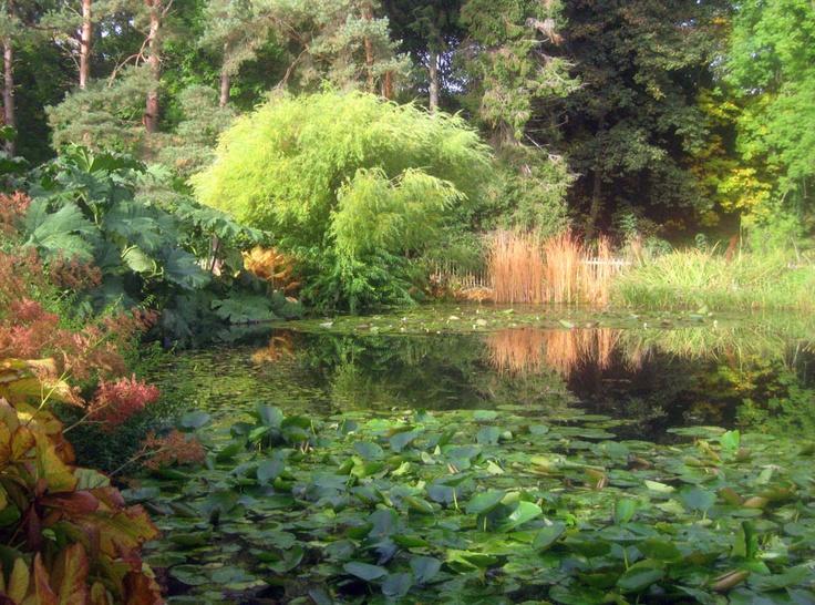 Garden Ideas Scotland 8 best st andrews botanic gardens tourism gaze images on pinterest
