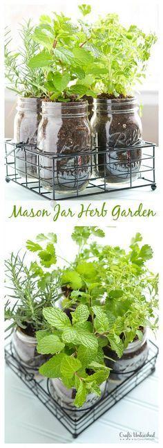 Mason jar herb garden                                                                                                                                                      More