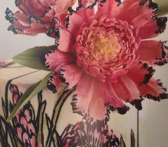 Protea | Maggie Austin Cakes | March 2014 #maggieaustincake