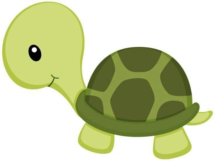 Turtle Drawing For Kids Baby Quilts Turtle
