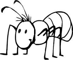 ant coloring pages for kids preschool and kindergarten - Ant Coloring Pages