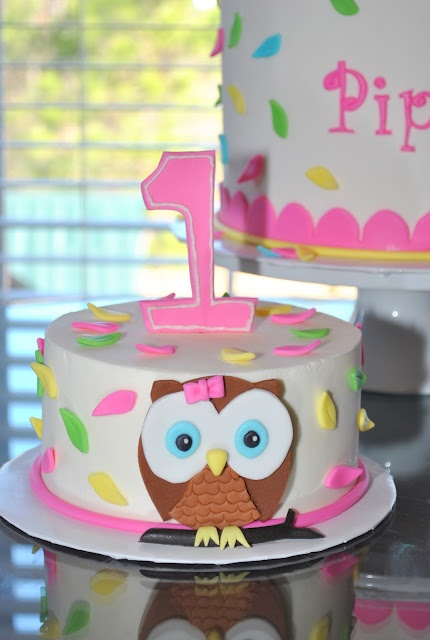 Owl Smash Cake! Might have to make this for Emily's first birthday!
