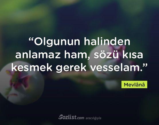 """""""Olgunun halinden anlamaz ham, sözü kısa kesmek gerek vesselam."""" #mevlana #sözleri #yazar #şair #kitap #şiir #özlü #anlamlı #sözler"""