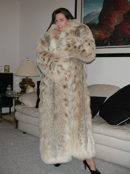 1000  images about Lynx on Pinterest | Coats Sexy and Mink