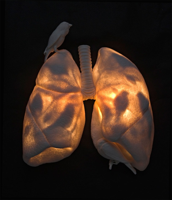 Surreal but amazing ceramic sculture of a set of lungs.