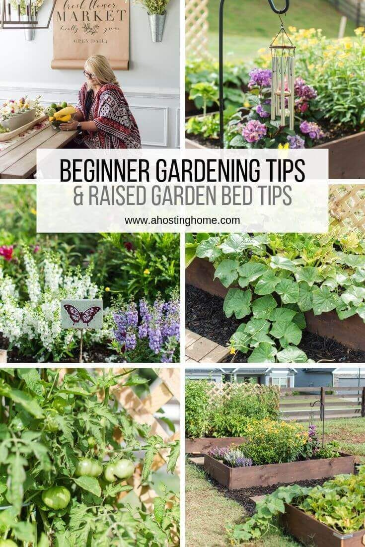 Our Tips For Beginners In The Garden Tips For Raised Garden Beds Beginner High Our Tips For Begi In 2020 Gardening For Beginners Raised Garden Garden Beds