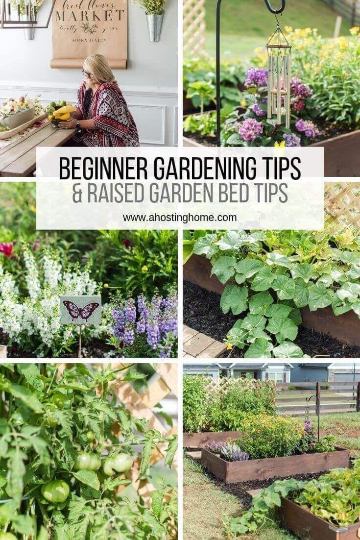 Unsere Tipps Fur Anfanger Im Garten Tipps Fur Angehobene Gartenbetten Anfanger Angehobene Garten Raised Garden Gardening For Beginners Garden Maintenance