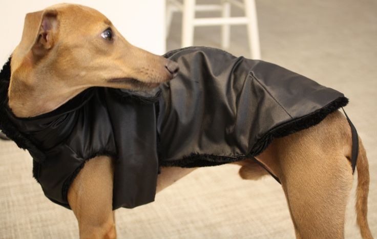 Clean with his reversible raincoat-faux fur jacket. Made to Measure by Amici di Alia  https://www.etsy.com/listing/208860366/reversible-black-faux-fur-raincoat-for?ref=shop_home_active_5