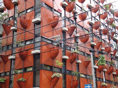 Organic Building In Osaka: Scott Bergey, Interesting Finding, Organizations Building, Bergey Photography, Tile Roof, Healthy Living