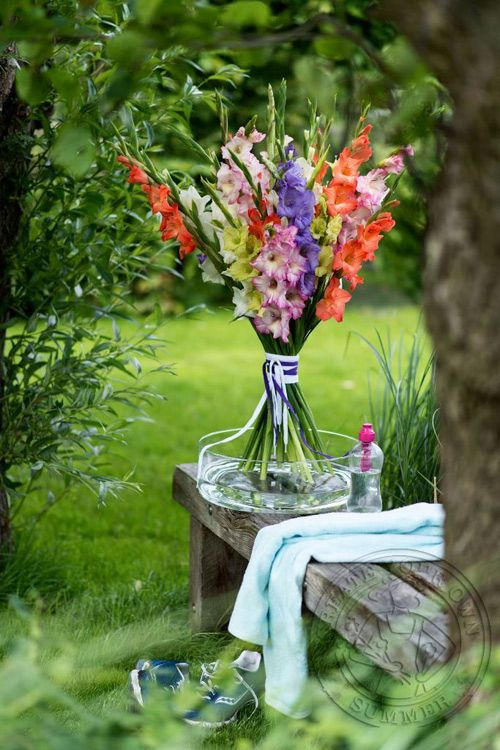Wonenonline: Feest met zomerbloemen