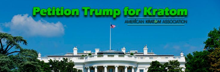 PLEASE HELP THE CHRONIC PAIN COMMUNITY!!!  NO ONE IS SIGNING! SIGN THIS PETITION URGING PRESIDENT-ELECT TRUMP TO STOP THE REGULATORY ASSAULT ON KRATOM! My fear is that complacency will not get us anywhere near the 140,000 sigs we collected for the White House petition. PLEASE PROVE ME WRONG! There is NO room for complacency. We are a long, long way off from winning this thing. A very long way (and that does NOT mean we have a long time, it means we have many battles yet to fight).