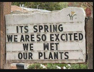 McKell's Closet: tutorials: Funny Signs, Shops Signs, Gardens Signs, Quote, Giggles, Funny Stuff, Gardens Humor, Spring, Flowers Shops