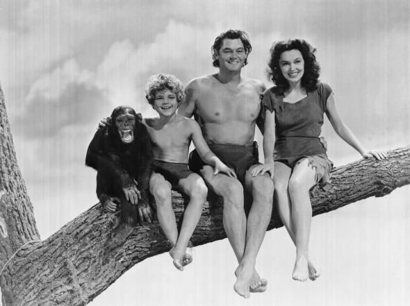 Weismuller went on to star in six Tarzan movies with Maureen O'Sullivan and also Cheeta the Chimpanzee. The last three of the series also included Johnny Sheffield as Boy