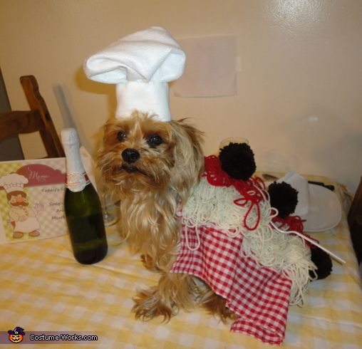 Spaghetti and Meatballs - 2013 Halloween Costume Contest
