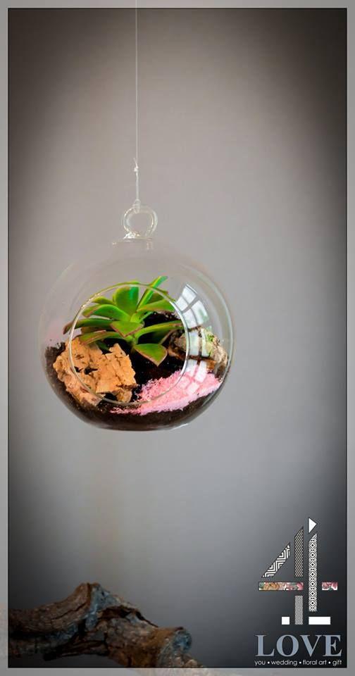 #Κρεμαστή_διακοσμητική_γυάλα με #παχύφυτο #4LOVEgr  - Floral Artist Ντίνος Μαβίδης & Concept Stylist Μάνθα Μάντζιου