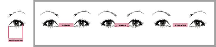 Para saber si tienes tus ojos juntos, separados o normales(o standard), debes medir el tamaño de uno de tus ojos, desde el lagrimal hasta la esquina donde finalizan. OJOS NORMALES (o estandard): La distancia entre nuestro ojos, desde el lagrimal derecho al izquierdo, corresponden al tamaño de nuestro ojo. OJOS JUNTOS: La distancia entre nuestro ojos es menor que el largo de un solo ojo. OJOS SEPARADOS: La distancia entre nuestros ojos es mayor que el largo de un solo ojo.