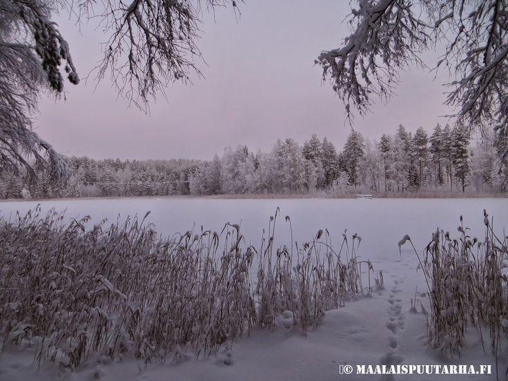 home lake at winter time