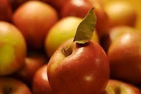 ополаскивание волос яблочным уксусом для блеска