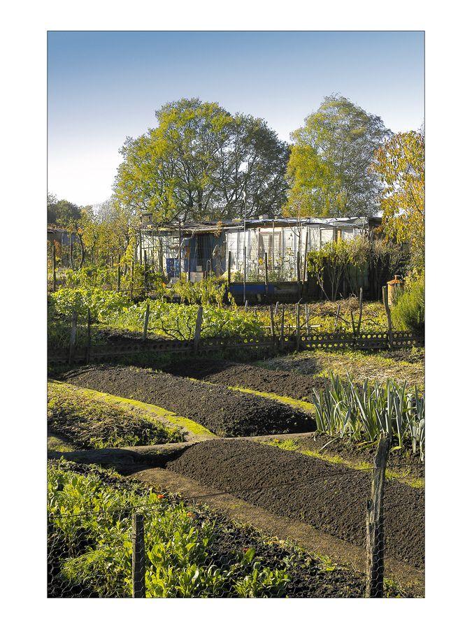 Jardins familiaux pau cabanes cabins pinterest potager et cabanes for Jardin familiaux