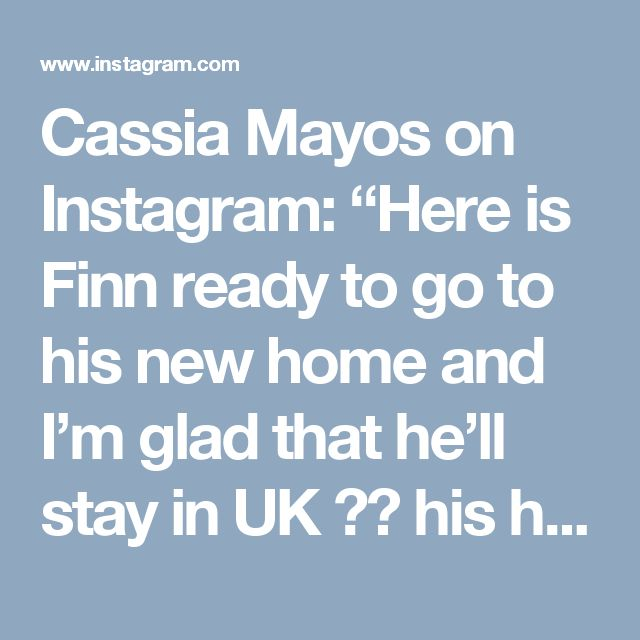 "Cassia Mayos on Instagram: ""Here is Finn ready to go to his new home and I'm glad that he'll stay in UK 🇬🇧 his hometown. Finn is a Faery made out of Polymer Clay, his…"" • Instagram"